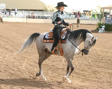Arabian horse show002