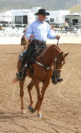 Arabian horse show005