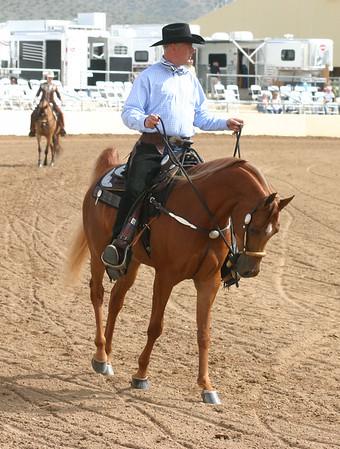 Arabian horse show006