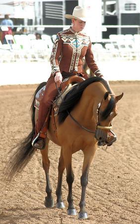 Arabian horse show010