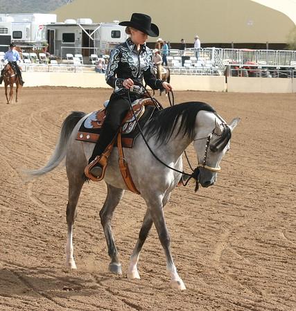 Arabian horse show001