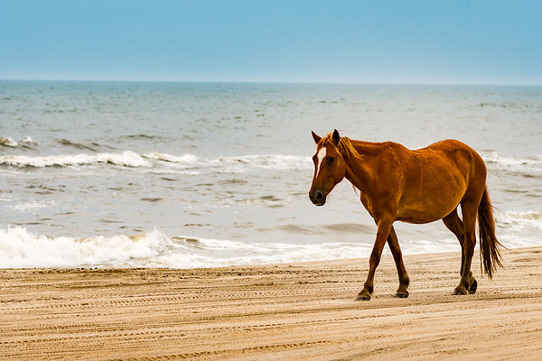 OuterBanks-3048
