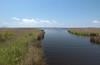 estuary river