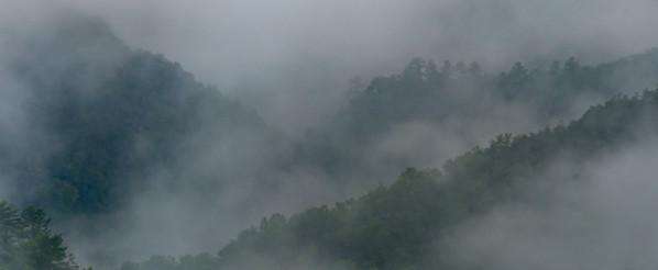 Smoky-6044
