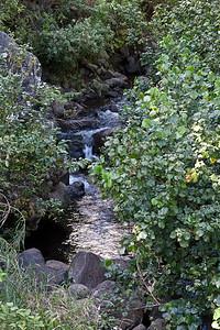 20091230-Maui-014