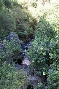 20091230-Maui-015