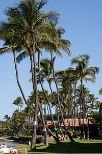 20091230-Maui-005