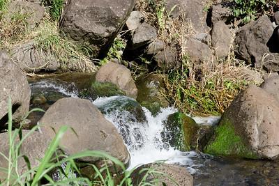 20091230-Maui-033