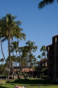 20091230-Maui-006