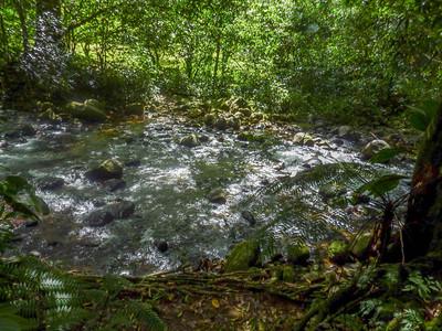 dominica-2011-33.jpg