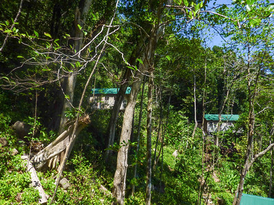 dominica-2011-13.jpg