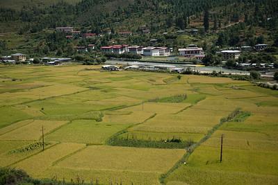 Bhutan (8 of 609)