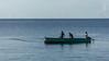 Local fishermen drop their net