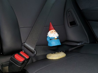 20190517-01p-Gnomie Buckled In and Ready