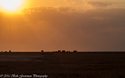 Amboseli Sunset - Amboseli NP - Kenya-2