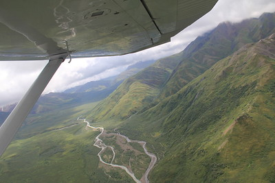 20160710-122 - Denali NP-Air Taxi back from Kantishna Roadhouse