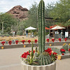Entrance to Phoenix's Desert Botanical Garden.