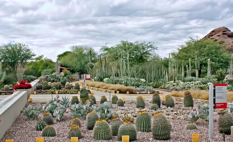 Entrance to the Desert Botanical Garden. (Phoenix)
