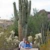 Greetings from the Sonoran Desert. (Desert Botanical Garden, Phoenix)