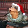 Santa frog. (Sedona, AZ)