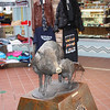 Javelina statue. Common throughout Arizona, Javelinas look like wild pigs, but are more closely related to the hippopotamus than the pig. They migrated from South America to the American southwest.