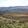 Painted Arizona landscape.