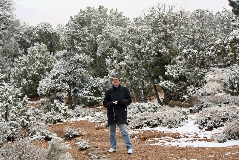 Outside the Desert View Watchtower, the trees are covered in snow.