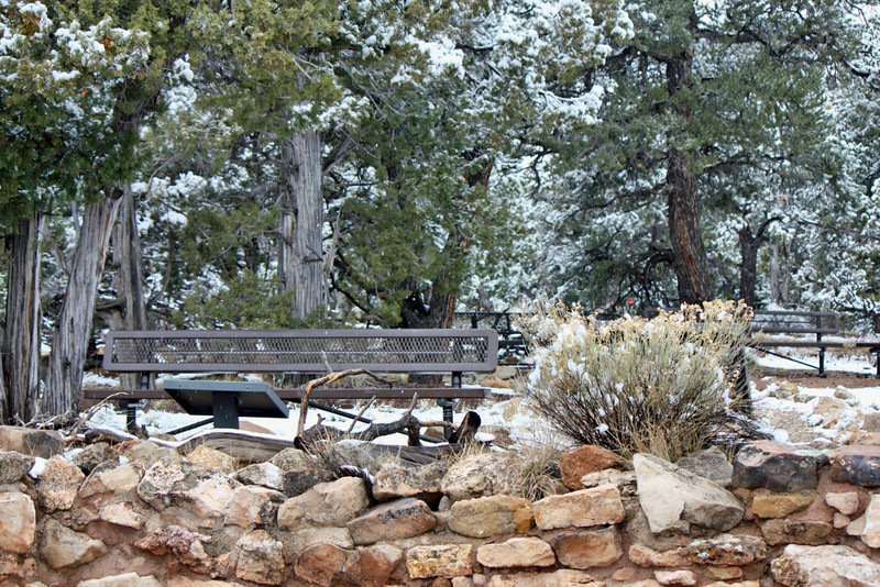 A place to contemplate at the Tusayan Pueblo ruins at Grand Canyon National Park.