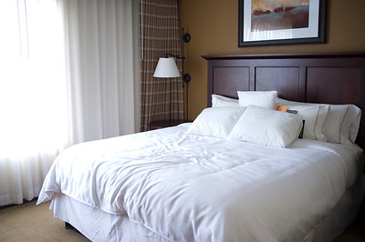 Sheraton Atlanta Perimiter North Suite