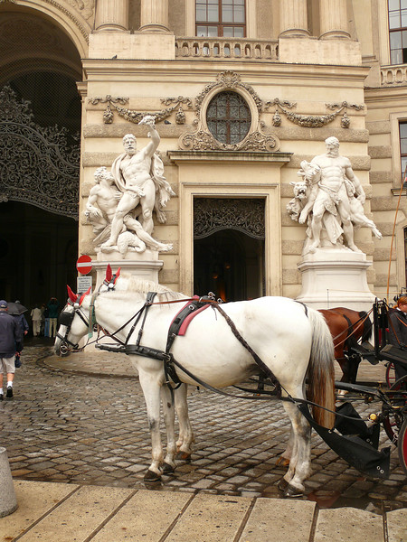 8-30-2007 Vienna 002