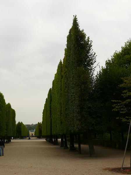 8-29-07 Schonnbrunn Palace 008