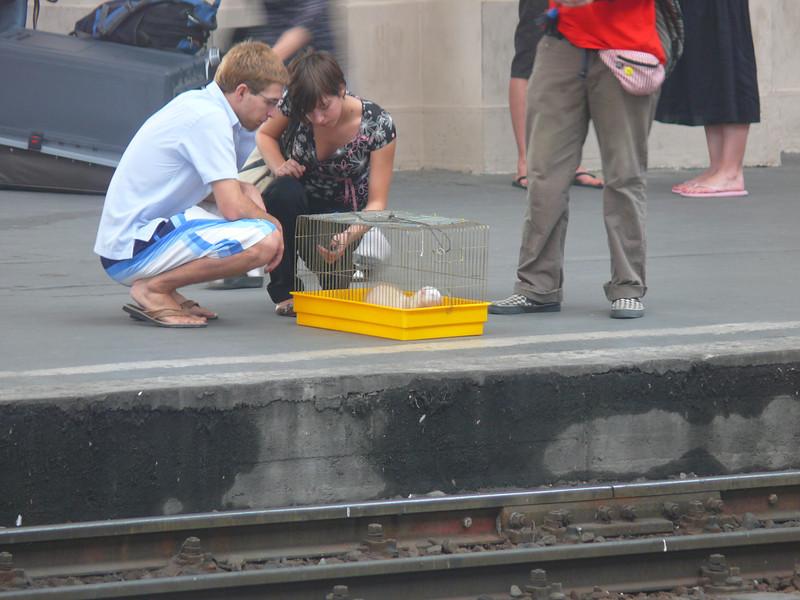 8-27-07 Train toVienna 007