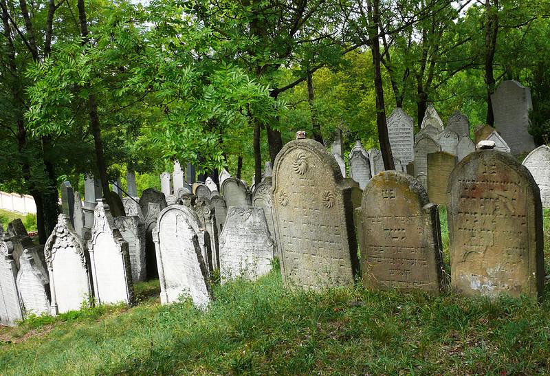 9-1-2007 Mikoluv - Jewish Cemetary (4)