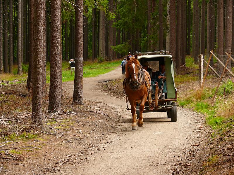 9-3-2007 Hiking to Nasty Hunter - Horse Drawn Wagon