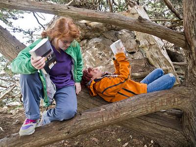 Reading in Big Sur.