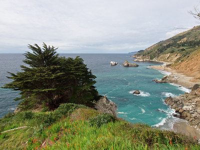 Flowery overlook on another Big Sur beach.