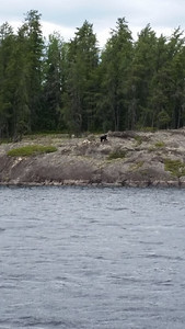 2015 Snowshoe Island Outpost