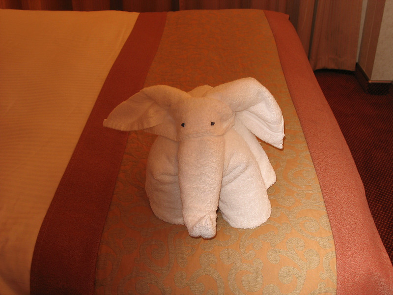 One of the many towel friends, which awaited us each evening.
