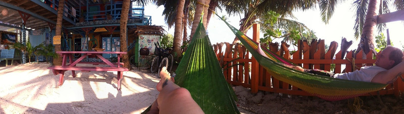 the view from the hammocks in the courtyard
