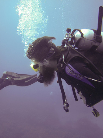 epic beard for diving