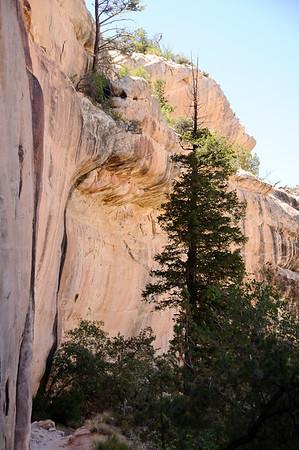 Concave cliffs