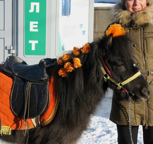 No holiday's complete without a pony ride.