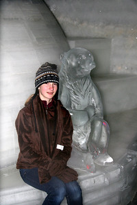 "Elaine (our ""bear"") and the smaller polar bear"