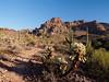 Lost Goldmine Trail