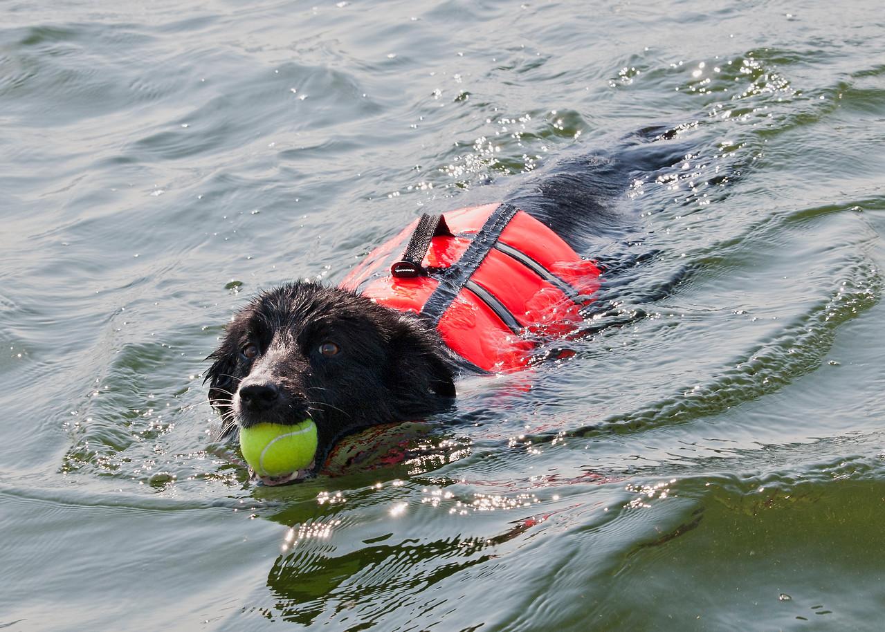 _7143071-Nick-ball-swim2