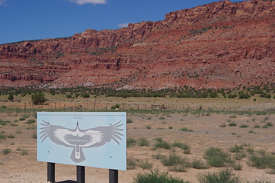 condor viewing area