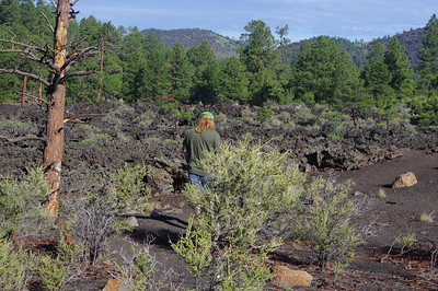 Lava Fields at Sunset Crater NP