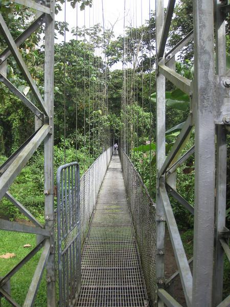 Hanging Bridges - went over around 15 of these.
