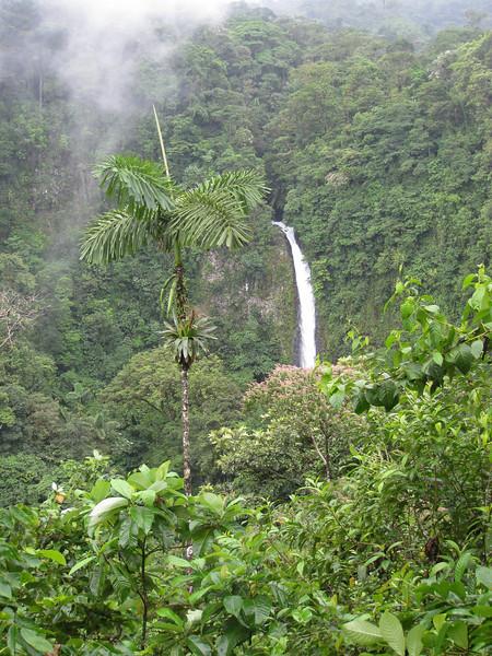 The last adventure in La Fortuna - to check out the La Fortuna catarata (waterfall)