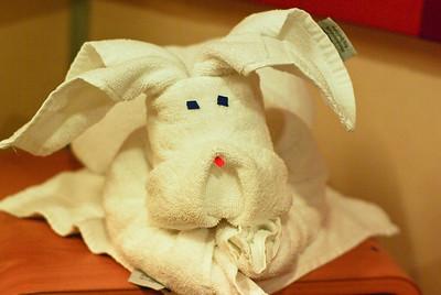 Towel Animals every evening